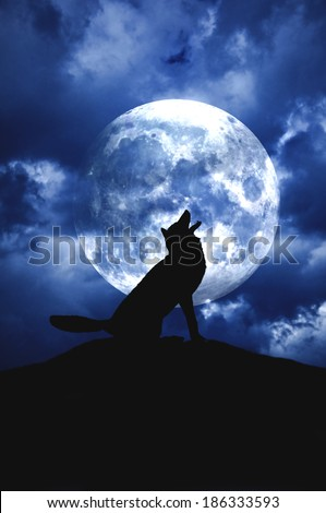 a silhouette of a wolf howling to the moon - stock photo