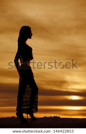 A silhouette of a woman in her lace skirt looking to the side - stock photo