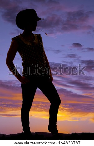 A silhouette of a woman with straw in her mouth. - stock photo