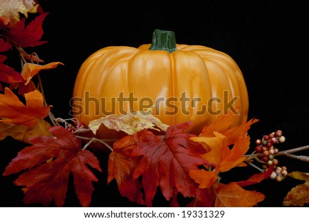 A single lone pumpkin against a black background with leaves along the left side. - stock photo