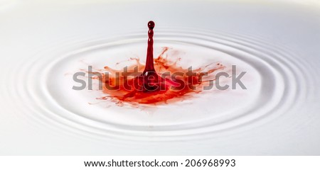 A single red paint drop lands in a shallow pool of water, creating a colorful splash. - stock photo