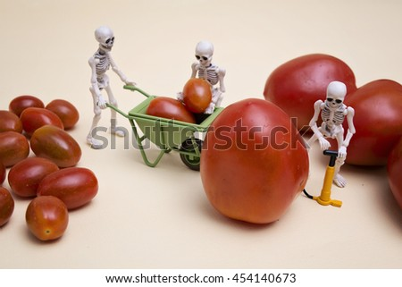 A skeleton pumping small tomato to be a big one, his two friends are helping - stock photo