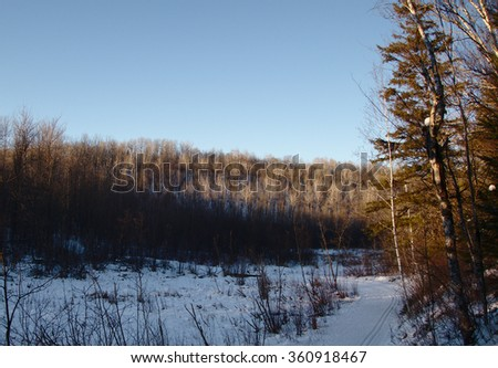 A ski trail winds through the northern Minnesota wilderness - stock photo