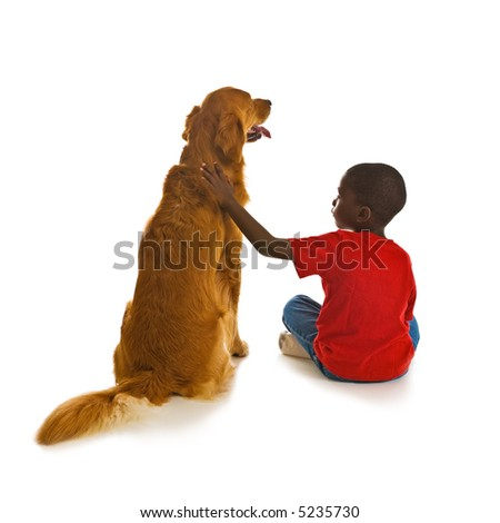 A small African American boy with a beautiful golden retriever dogs. - stock photo