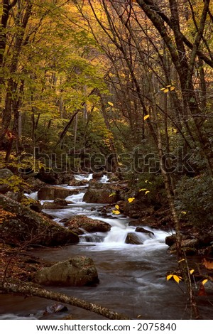 A small  cascade in the forests of Virginia. Taken with a slow shutter speed to soften the water. The stream is framed with the colorful  leaves of autumn. One of many waterfalls in my collection. - stock photo