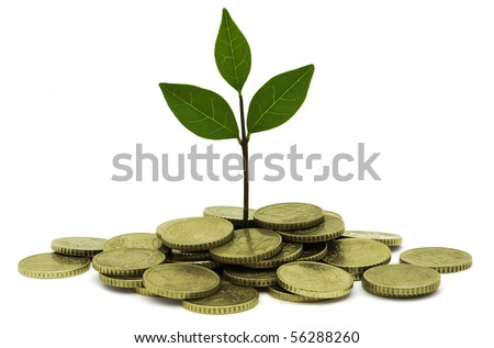 A small plant growing out of gold coins symbolizing investment and earning interest. - stock photo