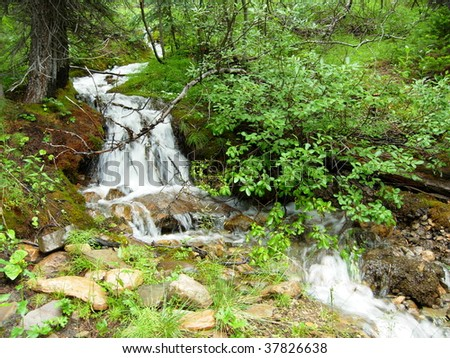 A Small Waterfall in the Woods - stock photo