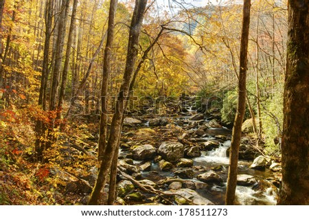 A small white water stream in fall in The Smokies. - stock photo