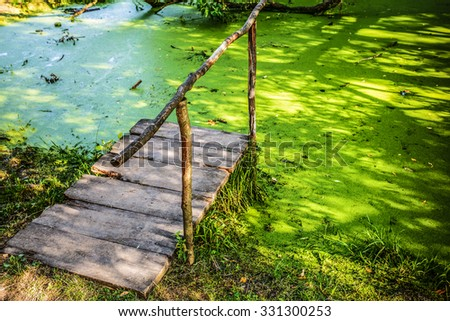 A small wooden bridge in a swamp with duckweed. - stock photo