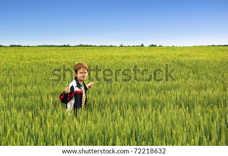 a smiling little boy in the meadow - stock photo