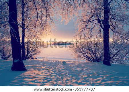 A snow path to the sunset. An image of a beautiful park during sunset set in the winter. The ground is covered with snow and the sundown is giving a purple tone. Image has a vintage effect applied. - stock photo