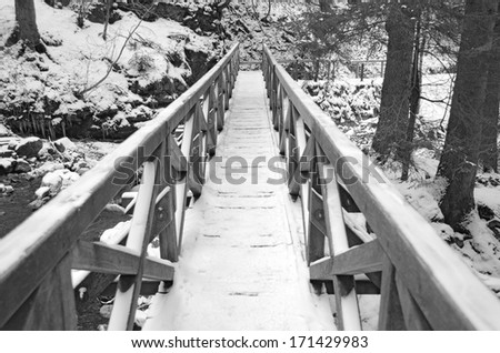 A snowy, icy footbridge crossing the beautiful Ravennaschlucht gorge in the Black Forest, Germany - stock photo