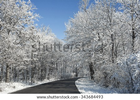 A snowy winter scene along a winding road with fresh snow clinging to the trees and a beautiful bright blue sky. - stock photo