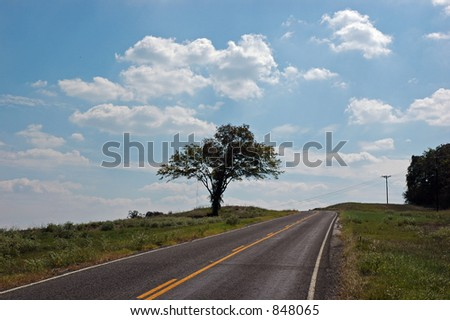 A solitary tree alongside a rural road - some noise - stock photo