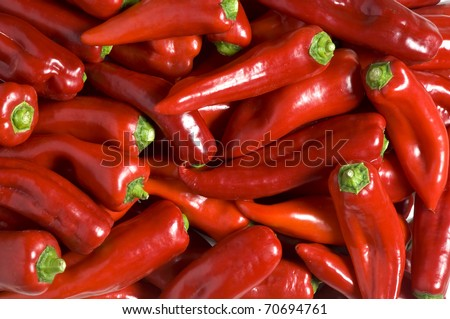 a special variety of red peppers from a region called Florina in Greece. - stock photo
