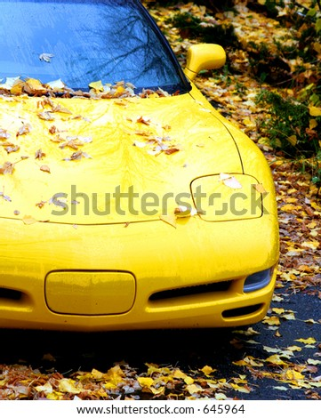 a sports car covered in leaves - stock photo