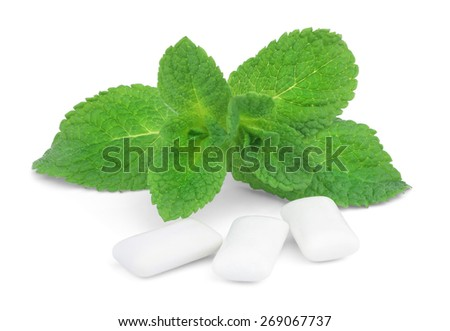 A sprig of mint and three pads of chewing gum isolated on white background. - stock photo