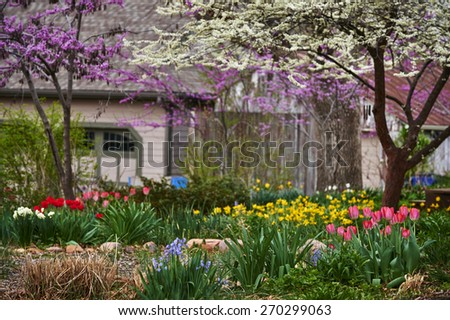 a Spring garden full of flowers - stock photo
