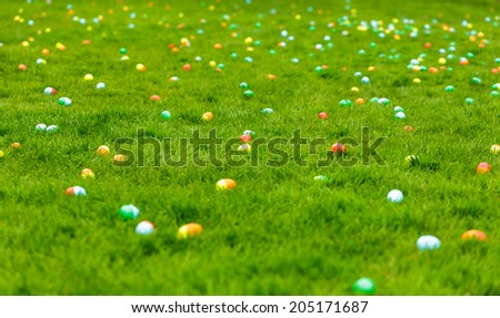 A spring meadow with Easter eggs hidden in the grass - stock photo