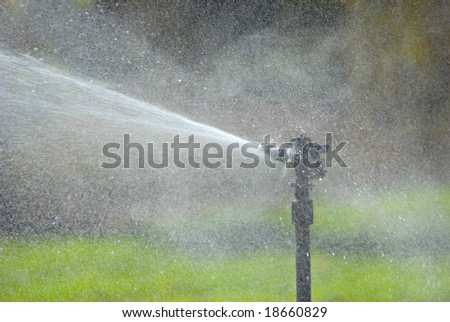 A sprinkler watering a lawn. - stock photo