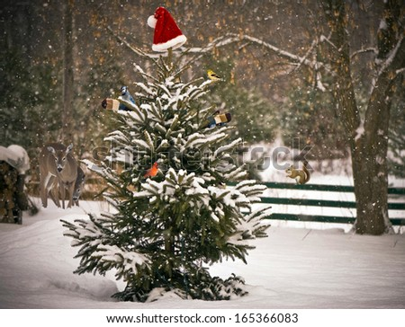 A Spruce tree in the snow decorated with a Santa hat and mitts, with colorful winter birds perched on its branches, with a mother, and baby deer, and a squirrel  looking on in the background.  - stock photo