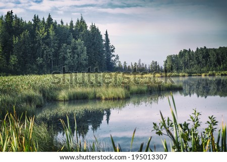 A still lake and marsh in rural Alberta, Canada. - stock photo