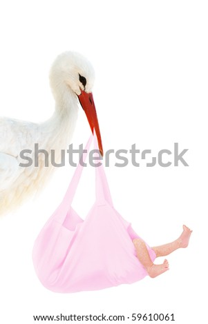 A stork holding a pink bag with a baby in his beak - stock photo