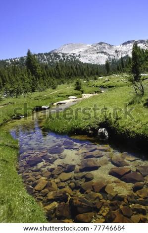 A stream running through a green meadow in the Sierra Nevada Mountains - stock photo