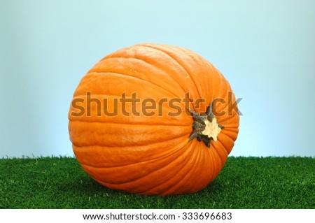 A studio photo of a Halloween pumpkin on artificial grass - stock photo