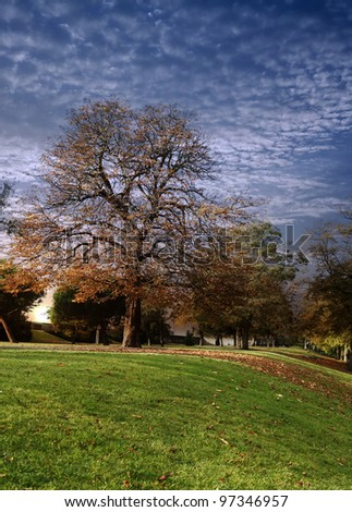 A surreal landscape of trees in a park with an apocalyptic cloudscape after sunset. - stock photo
