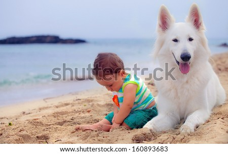 A sweet baby and his swiss white shepherd dog  - stock photo