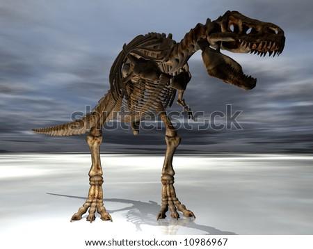 A T-Rex Tyrannosaurus dinosaur skeleton - stock photo