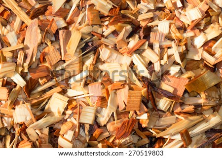 A texture shot of fresh wet garden wood chips or mulch with morning sunshine. - stock photo
