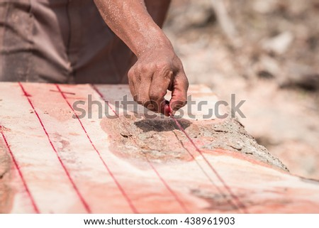 A Thai worker make the line before cutting trunk with chainsaw - stock photo