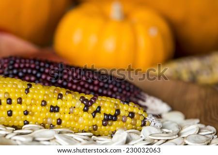 A Thanksgiving themed still life with corn, pumpkins and pumpkin seeds. - stock photo