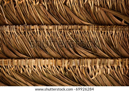 A thatched Roof in the Ecuadorian Amazon Jungle - stock photo