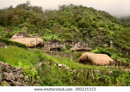 A traditional village in Papua, Indonesia , New Guinea Island - stock photo