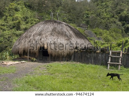 A traditional village in Papua, New Guinea - stock photo