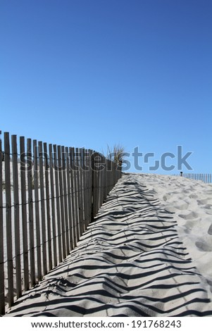 A trail along a sand dune in Cape Henlopen State Park, Delaware - stock photo