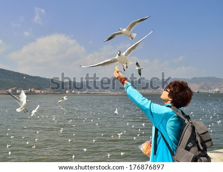 A traveler with bread to feed the seagulls - stock photo