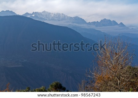 A tree in front of mountains - stock photo