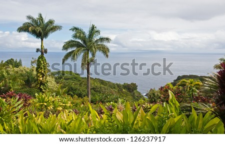 A tropical garden with flowers and two palm trees overlooking the ocean with blue sky and white clouds - stock photo