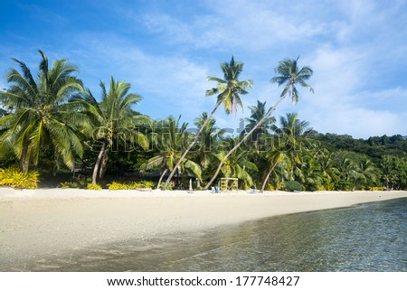 A tropical vacation resort beach lined with lush palm trees and white sand is ideal for family getaways. - stock photo
