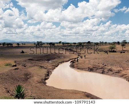 A typical Tanzanian landscape - Eastern Africa - stock photo