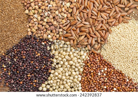 a variety of gluten free grains (buckwheat, amaranth, brown rice, millet, sorghum, teff,  red quinoa) i- top view - stock photo