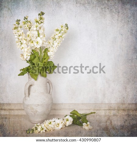 A vase of ivory stocks over white background. Textured to look like an aged photo - stock photo