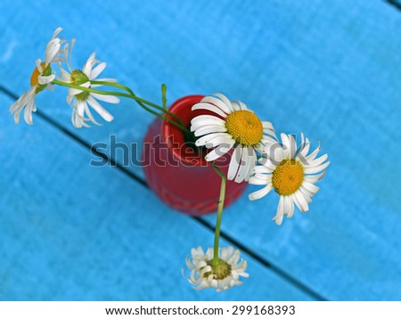 A vase of wild Daisies on blue background, selective focus. - stock photo