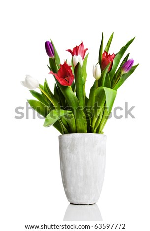 a Vase with red, pink and white tulips on a pure white background with space for text - stock photo
