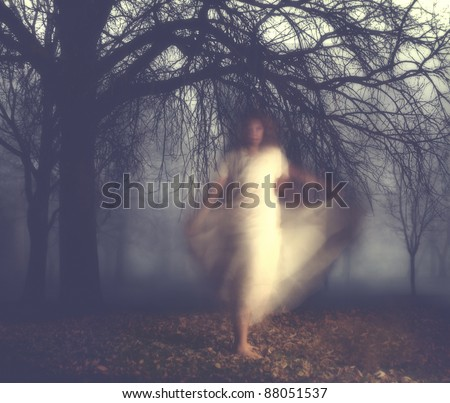 a very foggy night in the forest - stock photo
