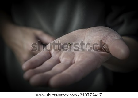 A very small caterpillar in the palm of a hand - stock photo